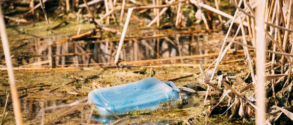old-plastic-canister-floats-in-water-of-swamp-or-QZFL7BG.jpg
